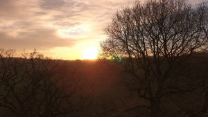 Sunrise in Abinger Hammer